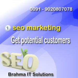 seo-marketing-cochin