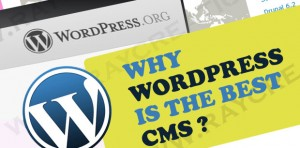 wordpress cms features