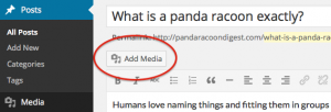 adding a media to wordpress post