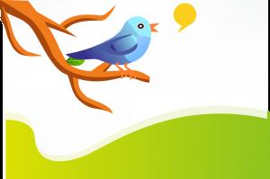 how to add twitter widget