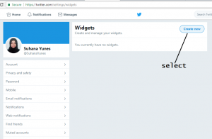twitter widget to blogger blog-widget page